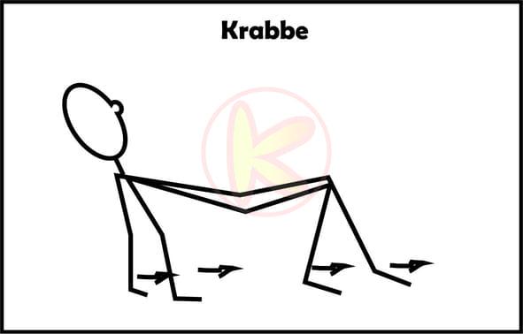 Krabbe-Animal Move Kinder