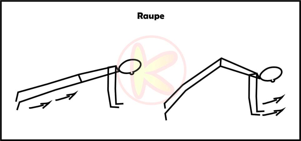 Raupe-Animal Move Kinder